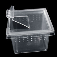 Transparent Plastic Plastic Box Insect Reptile Transport Breeding Feeding Case.