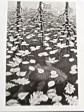 M C Escher Three Worlds Poster Reprint  15x12  Offset Lithograph Unsigned