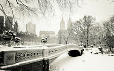 STAMPA SU TELA CANVAS NEW YORK CENTRAL PARK NEVE BIANCO E NERO CITTA' 60X100