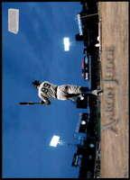 Aaron Judge 2019 Topps Stadium Club 5x7 #194 /49 Yankees