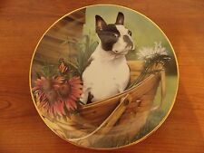 Danbury Mint Plate Boston Terrier Collectible Series Plates By Dan Hatala