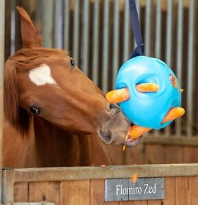 CARROT BALL | Shires Stable Hanging Horse Boredom Breaker Buster TOY TREAT