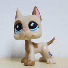 LPS Littlest Pet Shop Great Dane Dog #1647 Light Brown Tan Cream Blue Eyes Rare