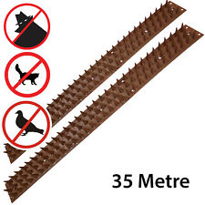 35 Metre Fence Wall SECURITY SPIKES Intruder Deterrent Repellent Bird Cat Guard