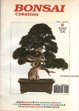 Bonsaï Création N 6 1991 PINCAGE Masahiko Kimura SUISEKI Tachiagari HETRE Mûrier