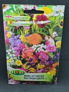 Mix Wildflower Dwarf Annual Cottage Countryside Easy Garden Pretty Mix