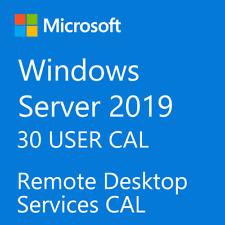Microsoft Windows Server 2019 Remote Desktop Services RDS 30 USER CAL License