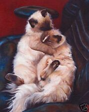11X14 Ragdoll Cat Art Print of Original Vern Painting