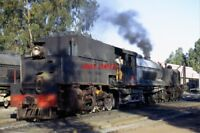 PHOTO  SOUTH AFRICAN RAILWAYS -  EX RR 16TH CLASS BEYER-GARRATT AT DOUGLAS COLLI