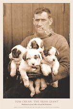 Polar, Antarctic Poster: Endurance Tom Crean 1914-17