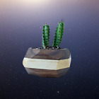 Handcrafted Geometric Cactus   Succulent Planter   Made in Portland