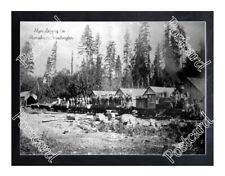 Historic Alger Lg Co. - Skamokawa, Washington Train Postcard