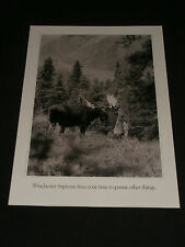 1988 Vintage Winchester Supreme Black & White Advertising Poster Moose Hunting