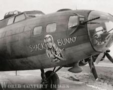 USAAF WW2 B-17 Bomber Shack Bunny (2nd) 8x10 Photo 385th BG 551st BS