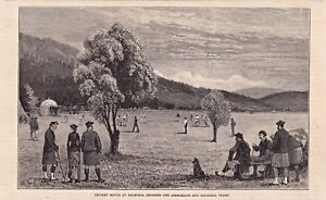 Cricket, Match bei Balmoral Schottland - Stich, Holzstich von 1880