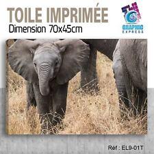 70x45cm - TOILE IMPRIMÉE- TABLEAU  POSTER DECO - ELEPHANT FELIN -EL9-01T
