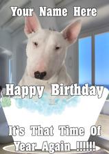 Bull Terrier dog bd15 Bath Time Fun Happy Birthday Card A5 Personalised Greeting