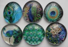 Blue Green Bird Peacock Glass Magnets Kitchen Art Decor