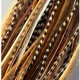 Feather Hair Extensions 6 Feathers 4-7 Natural Mix Ginger with Beige and Grizzly