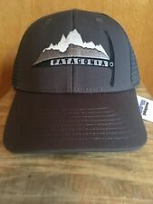 Patagonia  Day To Day Piolet Forge Grey LoPro Trucker Hat SPRING 2015