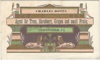 Pennsylvania Tree, Shrubbery & Fruit Tree 'Agent' Aesthetic Movement Card