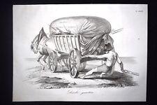 Incisione d'allegoria e satira Luigi Napoleone Bonaparte,Roma Don Pirlone 1851
