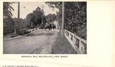 Mullica Hill New Jersey Memorial Day Parade Antique Postcard K50300