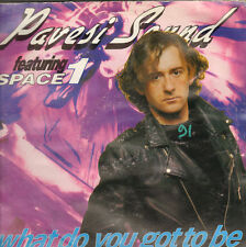PAVESI SOUND - What Do You Got To Be - 1991 Pavesi Sound Records - PMS 003