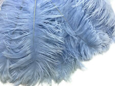 10 Light Ostrich Tail Large Feathers Centerpiece Halloween Costume 12-16""
