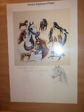 "equine horse artwork, Donna Adamson-Pitzlin ""Versatile Arabian"" signed, limited"
