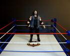 WWE CRUSH NATION OF DOMINATION  CUSTOM FIGURE MATTEL ELITE classic legend WCW