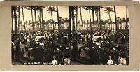 Egitto Cairo Il Marché Palm Grove c1900 Foto Stereo Vintage Analogica