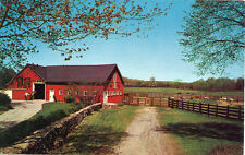 DOWN ON THE FARM BEAUTIFUL HORSE BARN 1970 PHOTO BY ROGER MACONI POSTCARD U/C