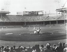 TIGER STADIUM INSIDE 8X10 PHOTO BASEBALL MLB PICTURE DETROIT TIGERS