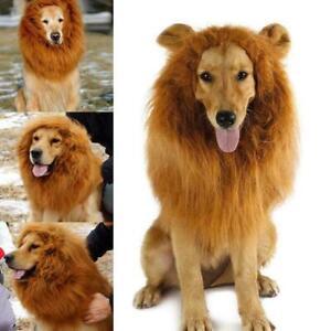 Pet Costume Lion Mane Wig w/ Ears For Large Dog Halloween Dress up Clothe New