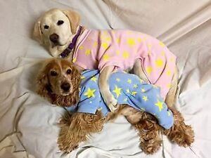 PAMPET Blue Dog pyjamas 50cm xxxlarge dogs, fleece 4 legs NEW