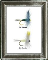 Hendrickson 2 Fly Labeled Print, light dry fly, dark dry fly, fly fishing
