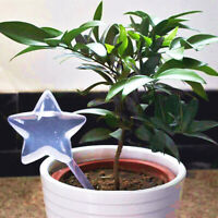 Garden Water Houseplant Plant star bird shaped Automatic Self Watering Device wr