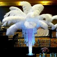 10Pcs Large Ostrich Feathers Costume Birthday Wedding Party 30-35cm Decoration