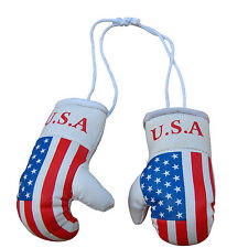 TurnerMAX Mini Boxing Hanging Gloves Fight MMA Muay Thai USA Flag
