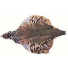 French Partridge Skin, Fly Tying Feathers, Crafting, Milliner, Fly Tying