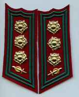 Finland Army SA Topography Service Engineers Colonel Collar Tabs