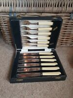 Maple & co ? epns 12 x faux plastic handle Fish Knife & Fork Set in case