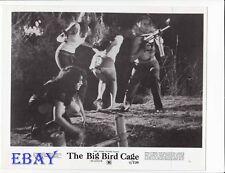 Busty leggy Babes VINTAGE Photo Big Bird Cage
