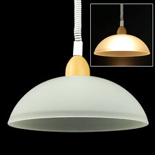 LED Ceiling Hanging Lamp 220V, E27 Bulb socket, Indoor Lighting Lamp 360 degrees