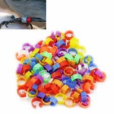 100X Chicken Hen Pigeon Leg Poultry Dove Bird Chicks Duck Parrot Clip Rings Band