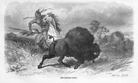 INDIANS HUNTING BUFFALO HUNT BY DARLEY WARRIOR INDIAN HUNTING ON HORSEBACK SPEAR