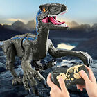 Simulation Remote Control Walking Roaring Dinosaur Toy for Boys Girls