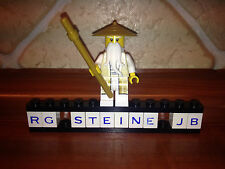 LEGO misako da Set 70751 Tempio di airjitzu Ninjago PUPAZZETTO NUOVO njo172