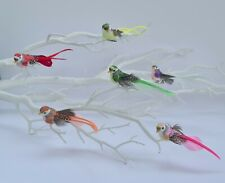 6 Small Artificial Feather Rainbow Craft Birds Christmas Tree Fake Decoration